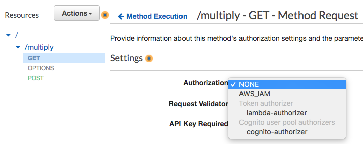 AWS Api Gateway Authorization(Access Control) with IAM, Cognito or